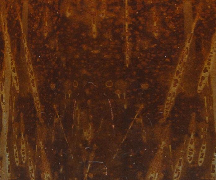 Hierro tipo Corten: Catálogo de Casa Nativa