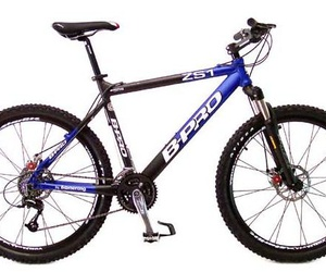 1. Mountain bike / Bike