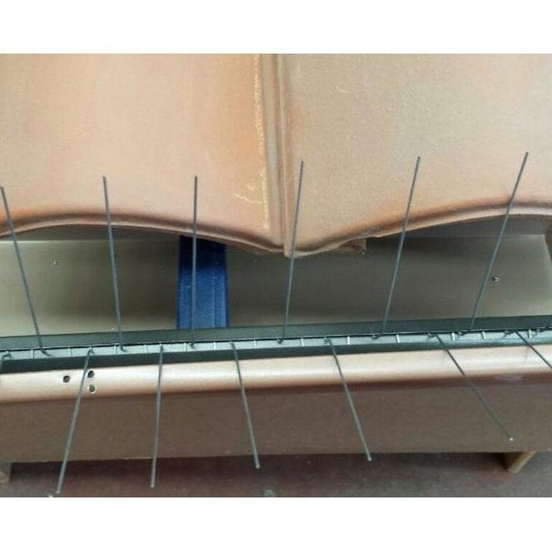 Instalación de canalón de aluminio : Productos y servicios de Canalón Cleaners