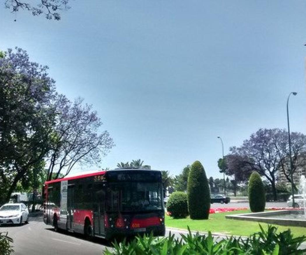 Viajar en autobús, una forma económica y divertida de hacer turismo