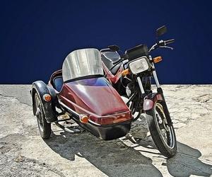 Bajas de turismos, motocicletas, ciclomotores y camiones.