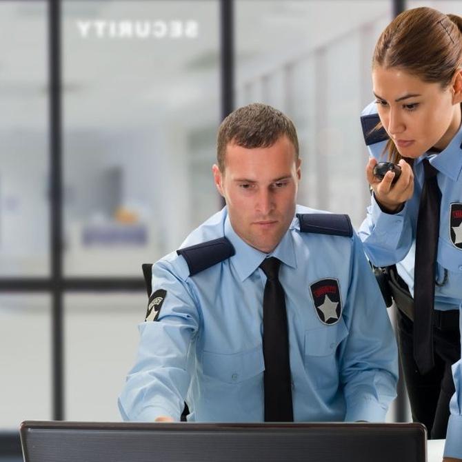 El personal de la Seguridad Privada (I)