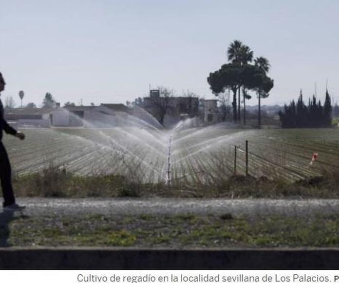 Pesca de basura, agua reutilizada y obsolescencia: primer plan de economía circular de España