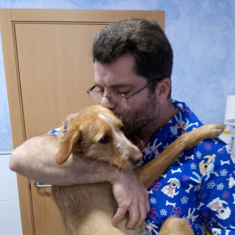 Nuestro equipo: Servicios de Clínica Veterinaria Rocafort