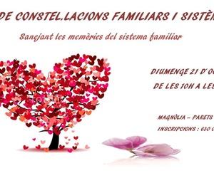 TALLER DE CONSTEL.LACIONS FAMILIARS I SISTÈMIQUES