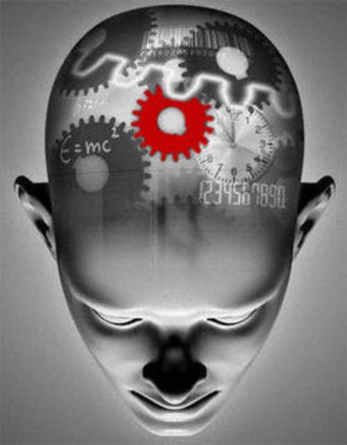 cerebro web