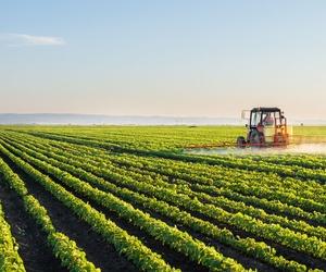 Asesoramiento agrícola en Almería