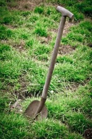 Herramientas y utensilios: Productos  de Endanea Garden Center