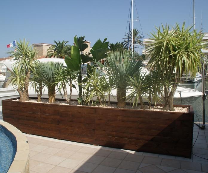 Construcció i plantació jardinera