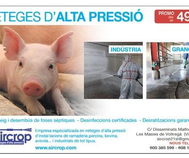 Promoción en desinfecciones