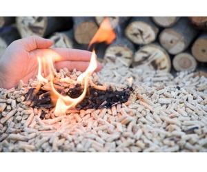 Todos los productos y servicios de Carbones y leña: El Almacén de Gil