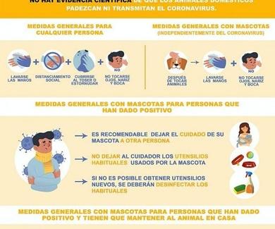 El Coronavirus y Los Animales  -  Medidas Generales