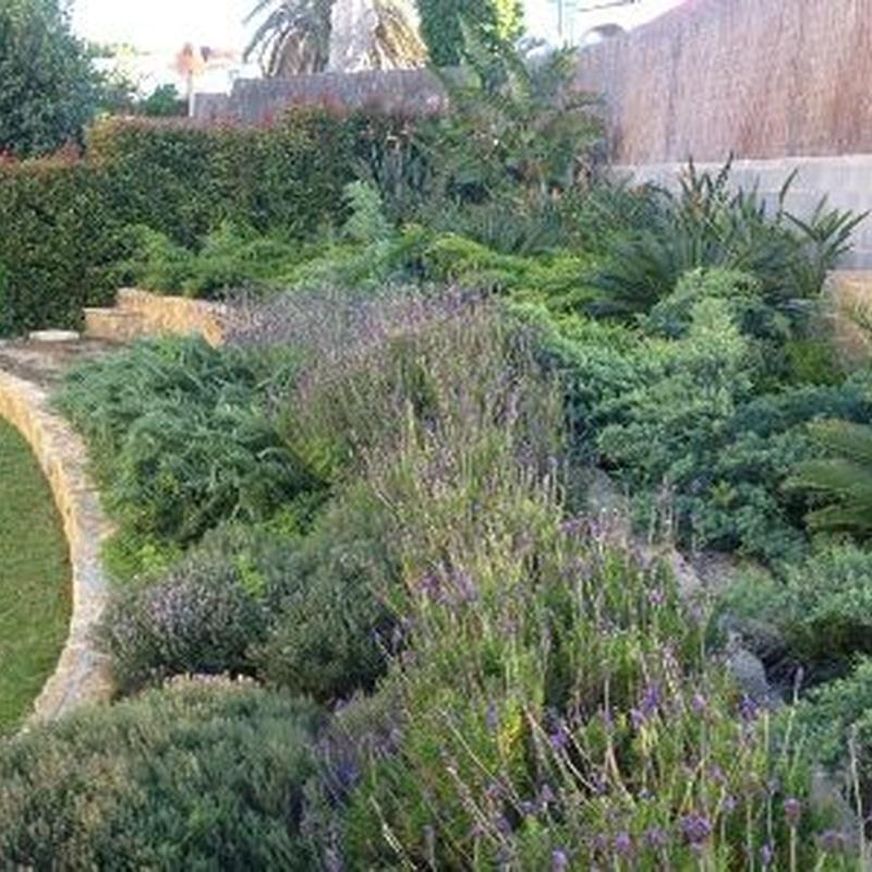 Paisajismo y diseño de jardines: Nuestros servicios de Jardinería Bordera