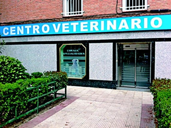 Clinicas veterinarias baratas en Madrid