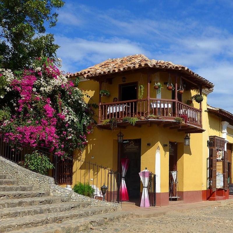 Balcones y terrazas: Servicios de Jardinería Belardi, S.L.