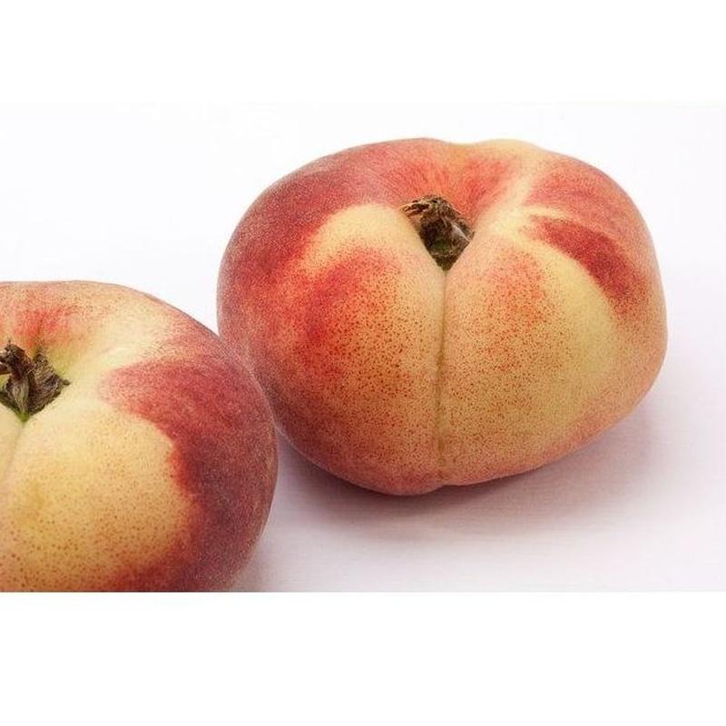 Melocotón blanco: Productos de Mundifruit