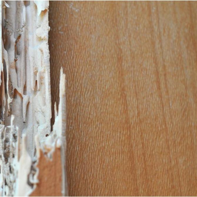 Tratamientos de estructuras de madera