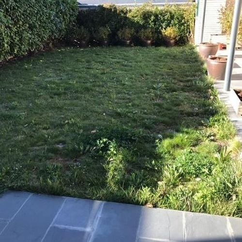 Construcción y mantenimiento de jardines en Navarra | Belardi Jardín