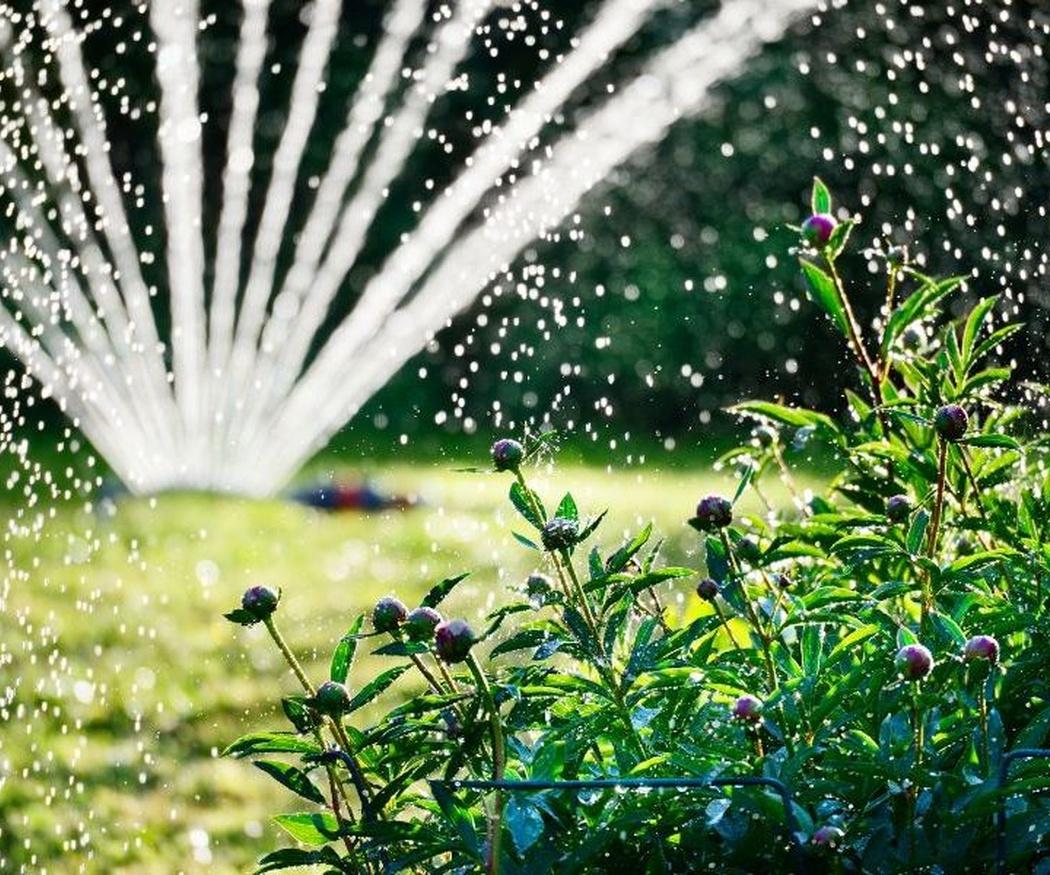 Las ventajas de los sistemas de riego para el jardín
