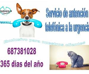 TELEFONO DE ATENCIÓN A LA URGENCIA