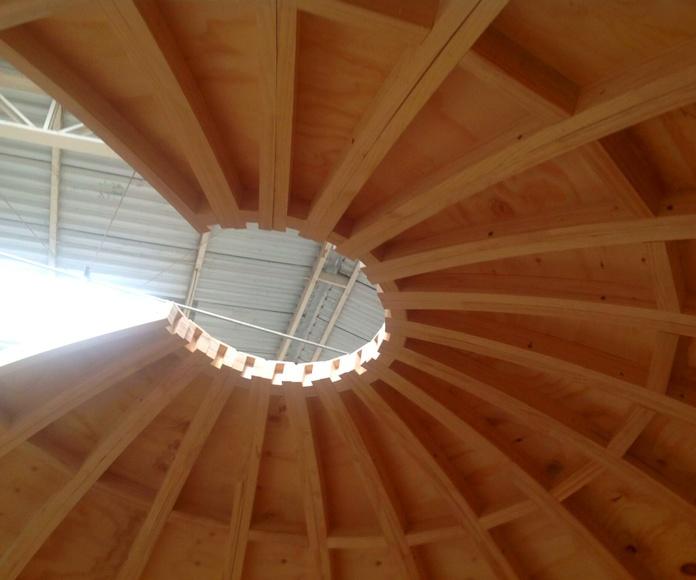 Cabañas Domo  Cúpulas Geodésicas: Productos y servicios de Cortelima