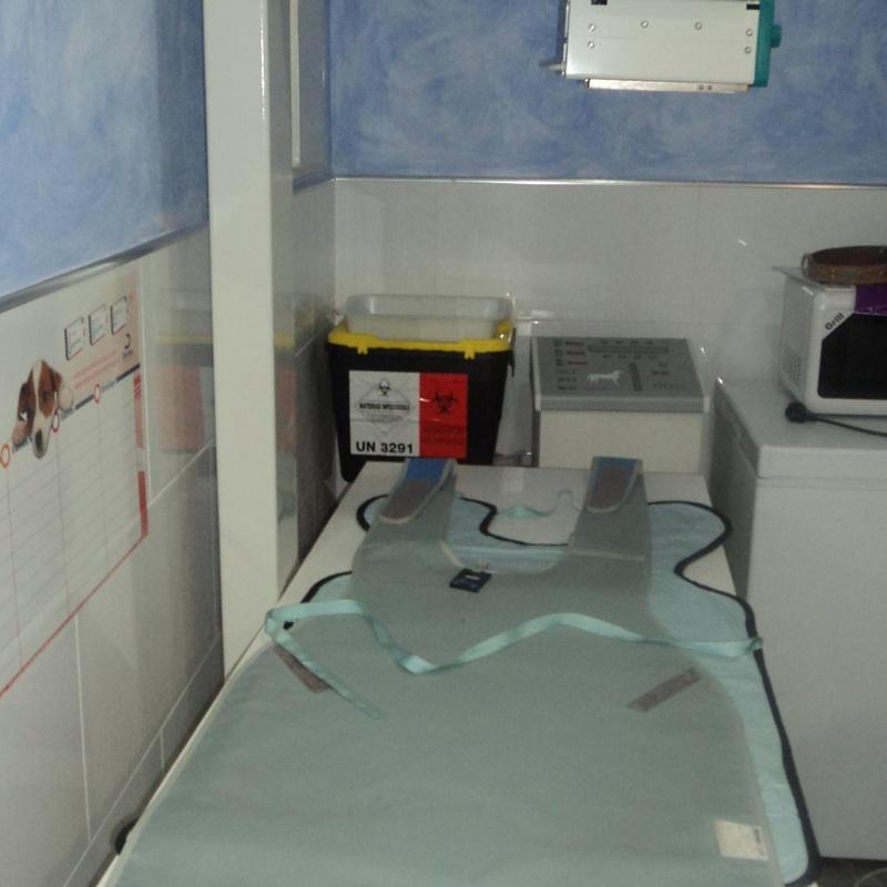 RX: Servicios de Clínica Veterinaria Rocafort