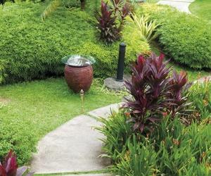 Expertos en diseño de jardines