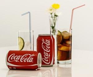 Bebidas frías