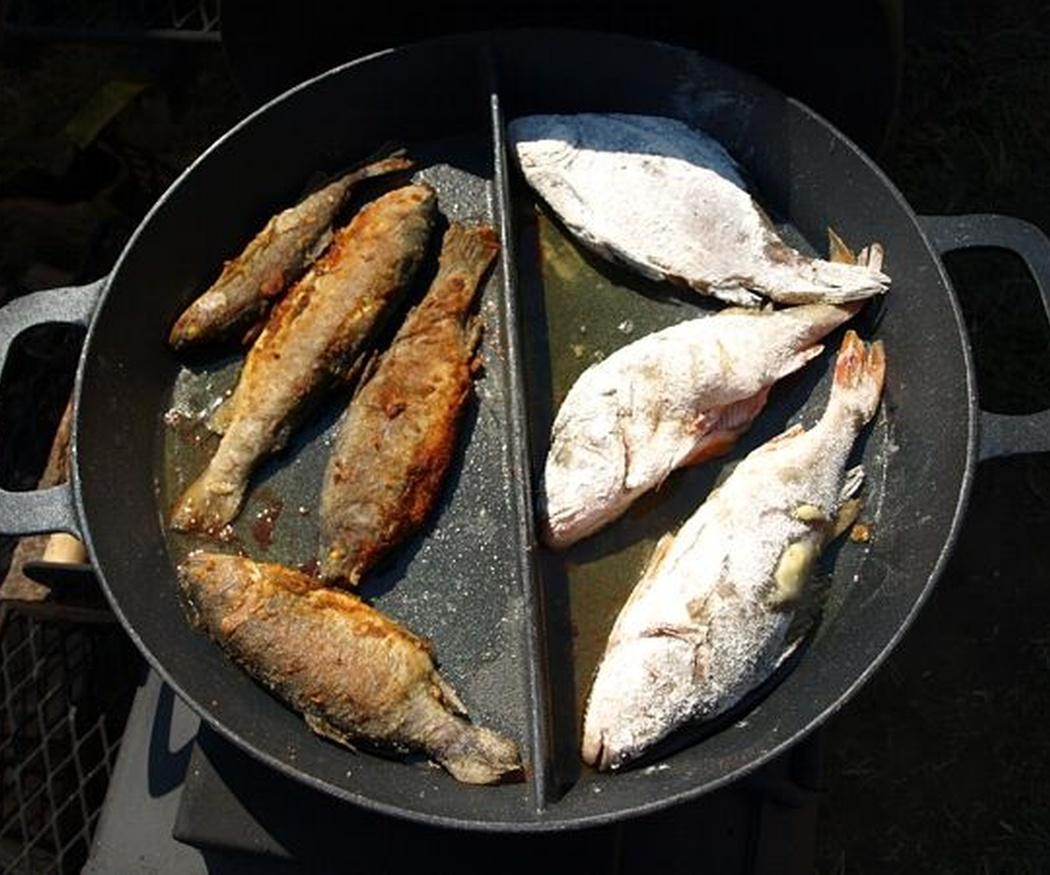 Motivos para comer pescado regularmente