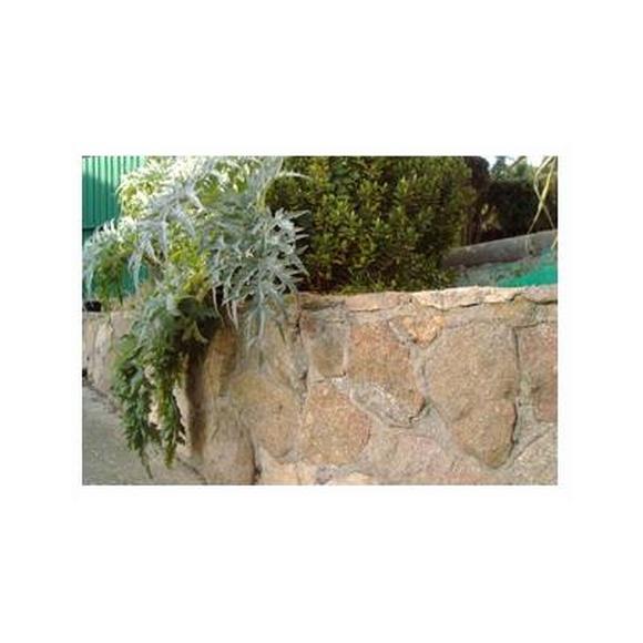 Muros de piedra: Servicios de Reformas y Servicios De la Llave