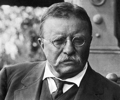 """""""HAZ LO QUE PUEDAS, CON LO QUE TIENES, DONDE QUIERA QUE ESTÉS"""" Theodore Roosevelt"""