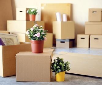 Mudanzas de pisos y locales: Servicios de Grupo Mudatrans