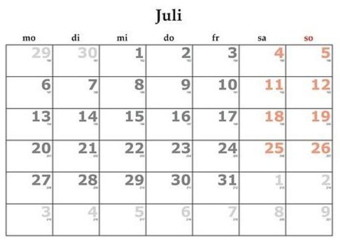 Julio: Servicios y Campañas de Clínica Veterinaria Benicalap