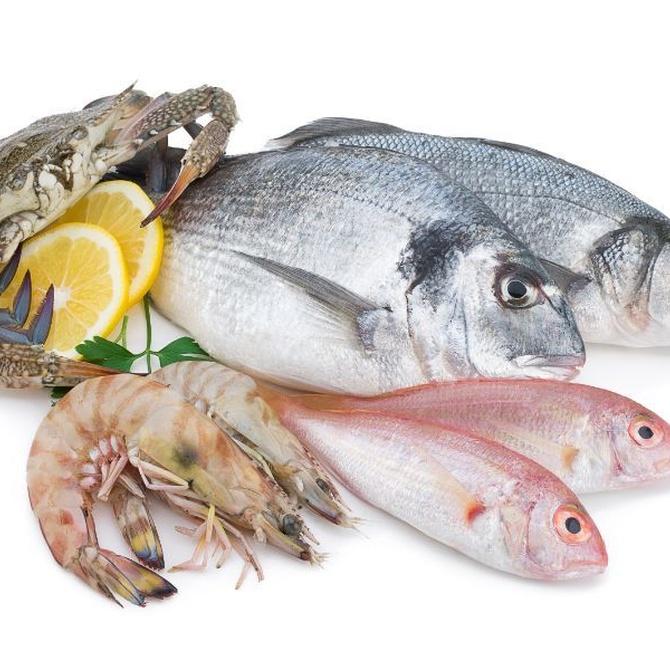 Cómo conocer los signos de frescura de un pescado