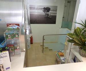 Instalaciones de nuestra clínica veterinaria en Alcorcón