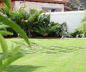 Construcción de jardines en Canarias