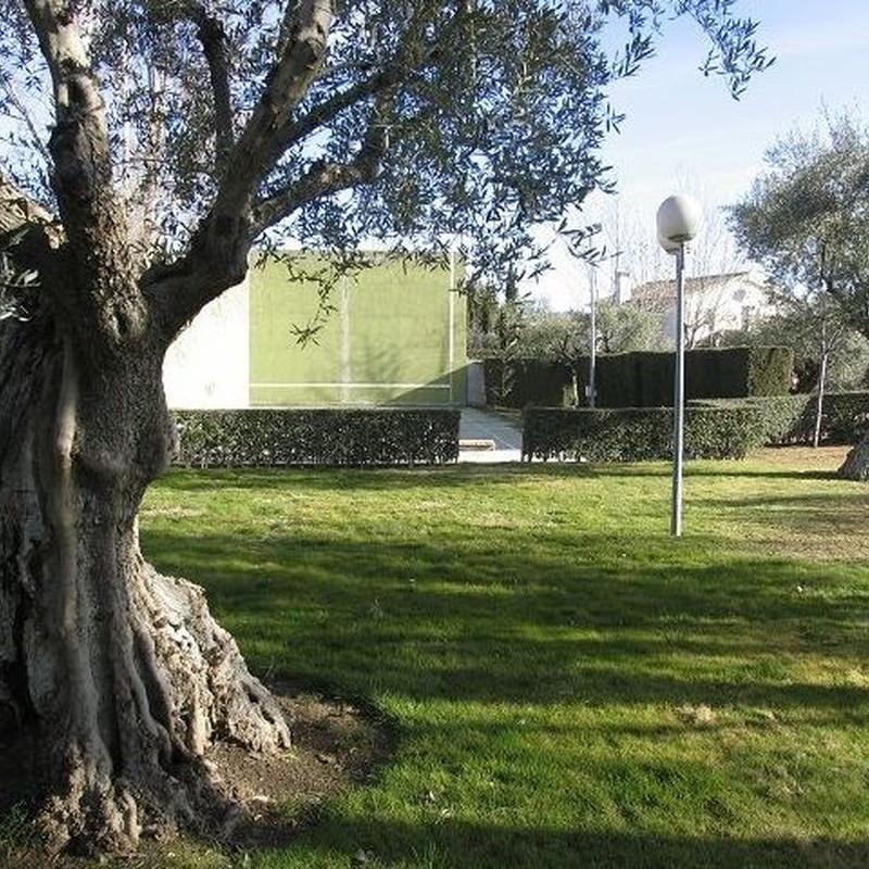 Chalet con piscina y frontón en Toledo: Inmuebles de Inmobiliaria La Montañesa