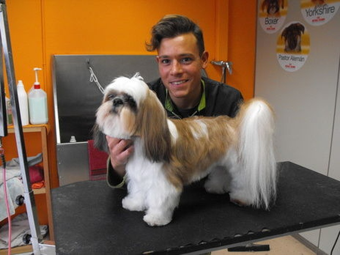 Peluquería: Servicios de Animalvet