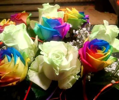 Rosas que se iluminan