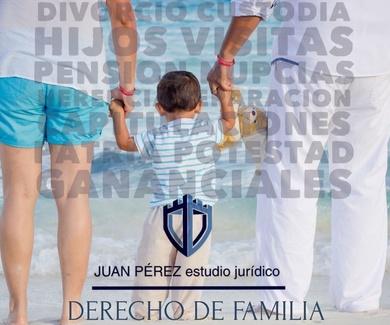 Los asuntos de Derecho de Familia en el RDL 16/2020, de 28 de abril.