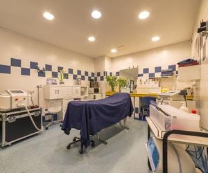 Galería de Especialistas en medicina estética y cirugía plástica en Elx | Odex Corporación
