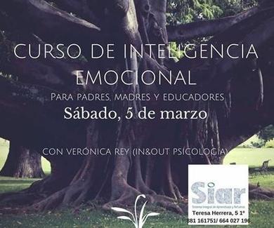 Curso de Inteligencia Emocional para Educadores.