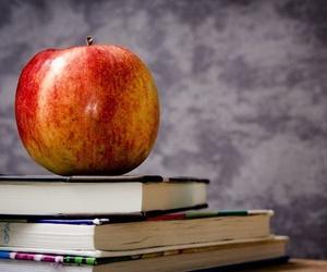 Todos los productos y servicios de Guarderías y escuelas infantiles: Érase Una Vez