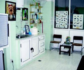 Las Palmas de Gran Canaria http://www.clinica-veterinaria-losgalgos.es/es/