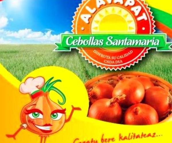 Mayorista de cebollas en Vizcaya