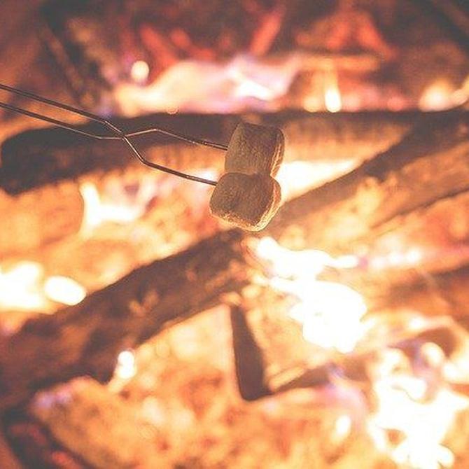 El sabor del fuego