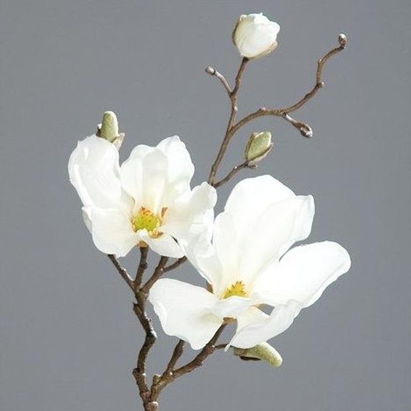 Vara corta magnolia. Ref.:42493-05 Color: Blanco Medidas: 50cm