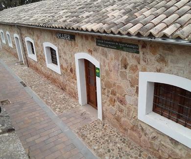Nueva Sede De A.P.L.I.J.E.R. Paseo Virgen de Linarejos s/n -Casillas de Renfe,