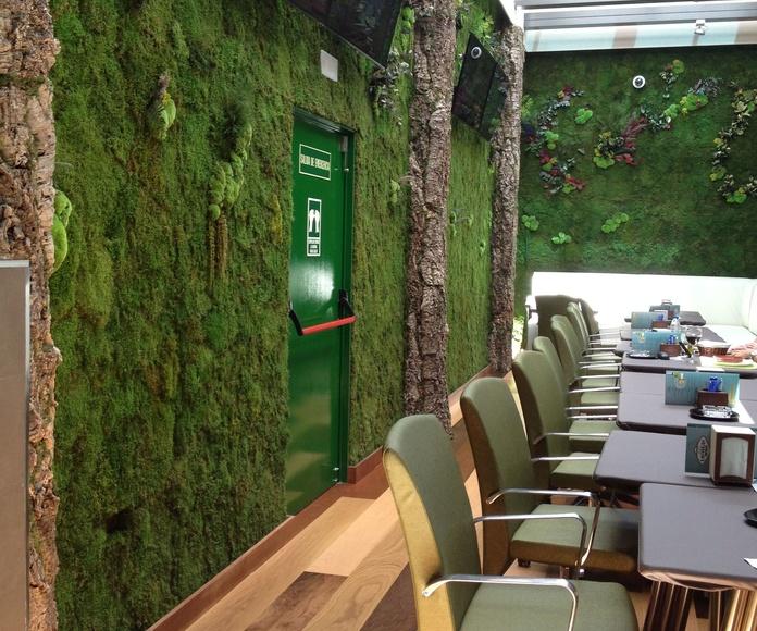 Jardines verticales: Servicios de Concept Decoración