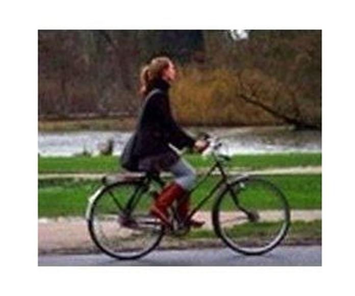 Bicicletas paseo-recreo: Bicicletas de Bicicletas Goicontini